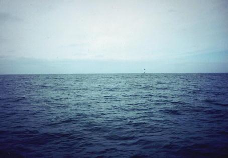 Resultado de imagen para mar calmada pintura
