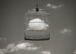 soñar con jaula