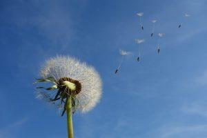 soñar con viento