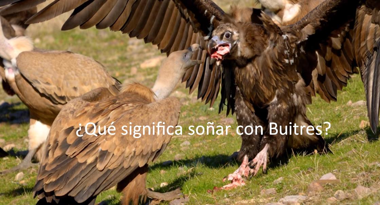¿Qué significa soñar con Buitres?